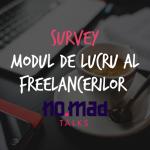 Survey: Modul de lucru al freelancerilor